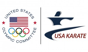 USA Karate Banner 3x5